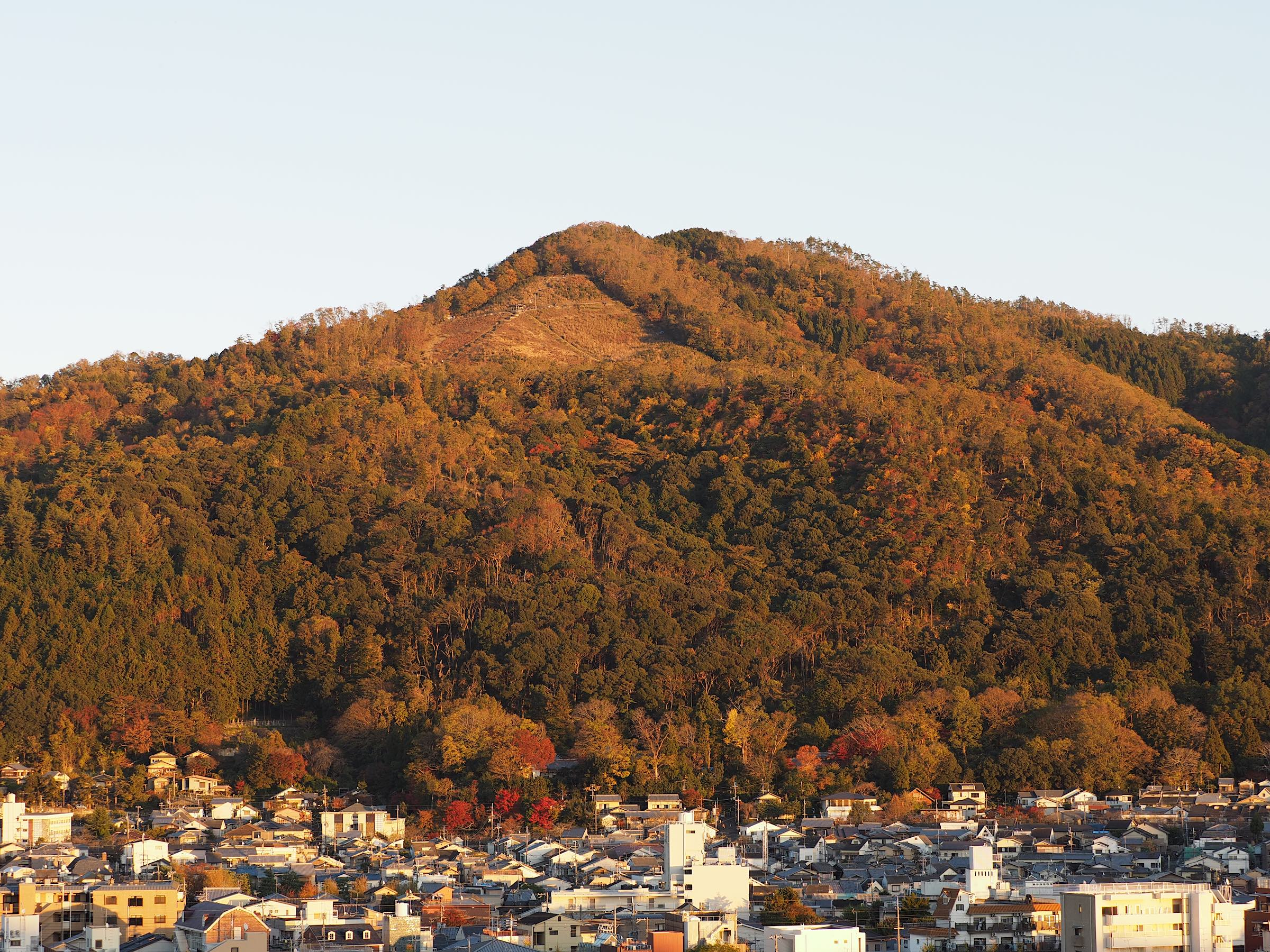 赤い大文字山