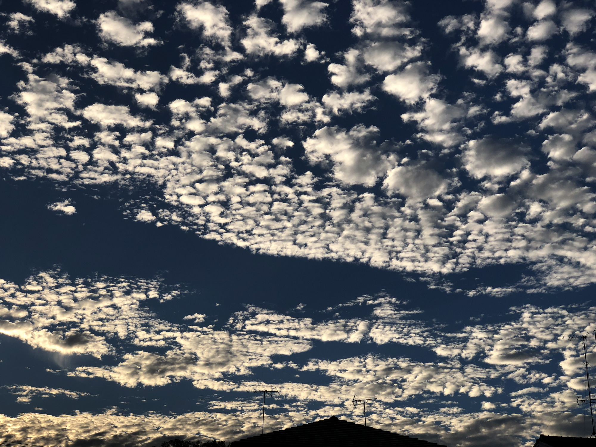 photo by iPhone X