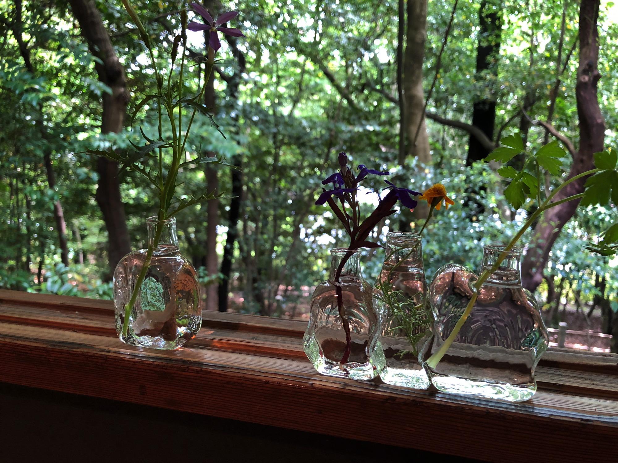 Glass & Grass