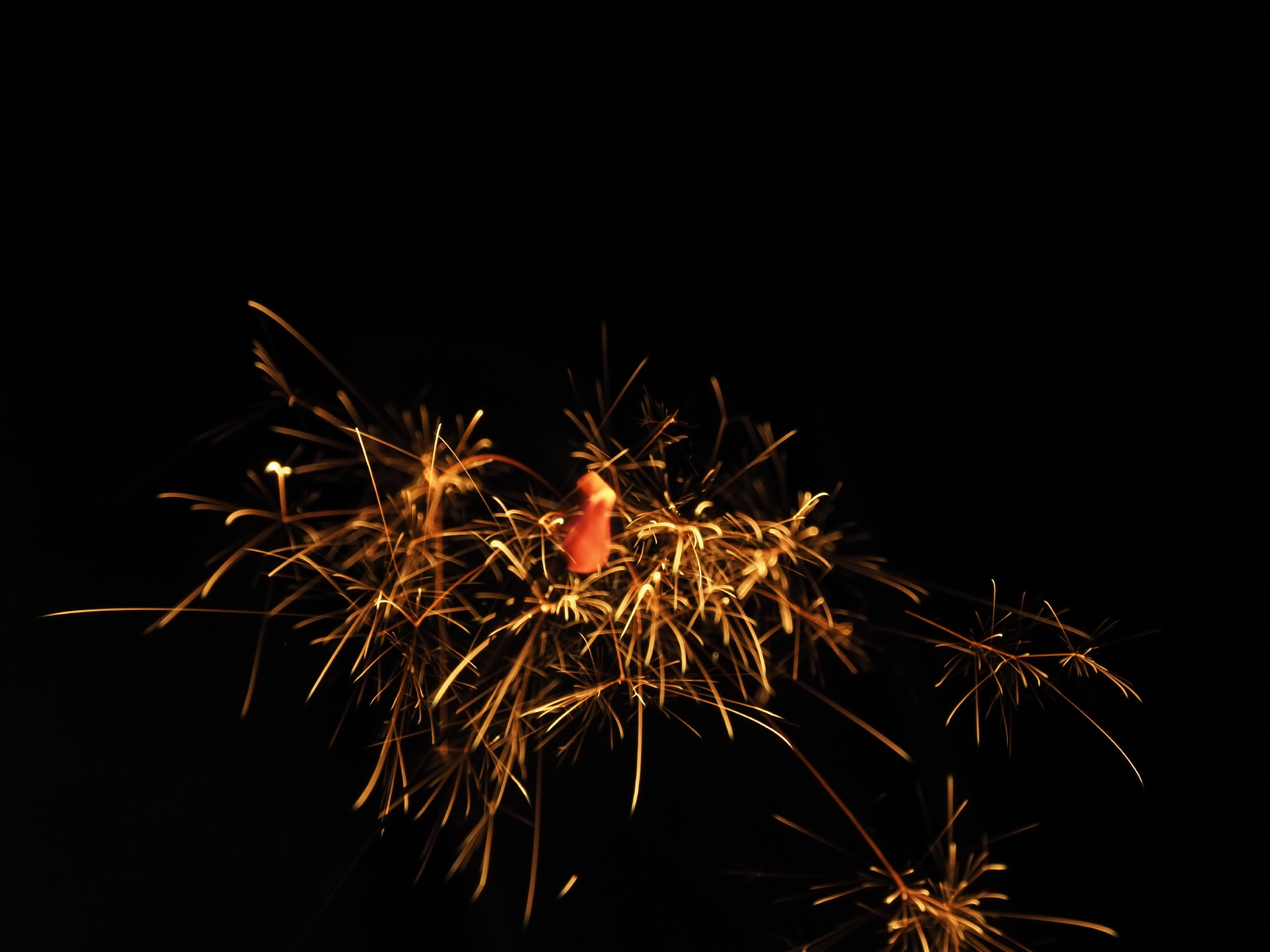 線香花火上向き2