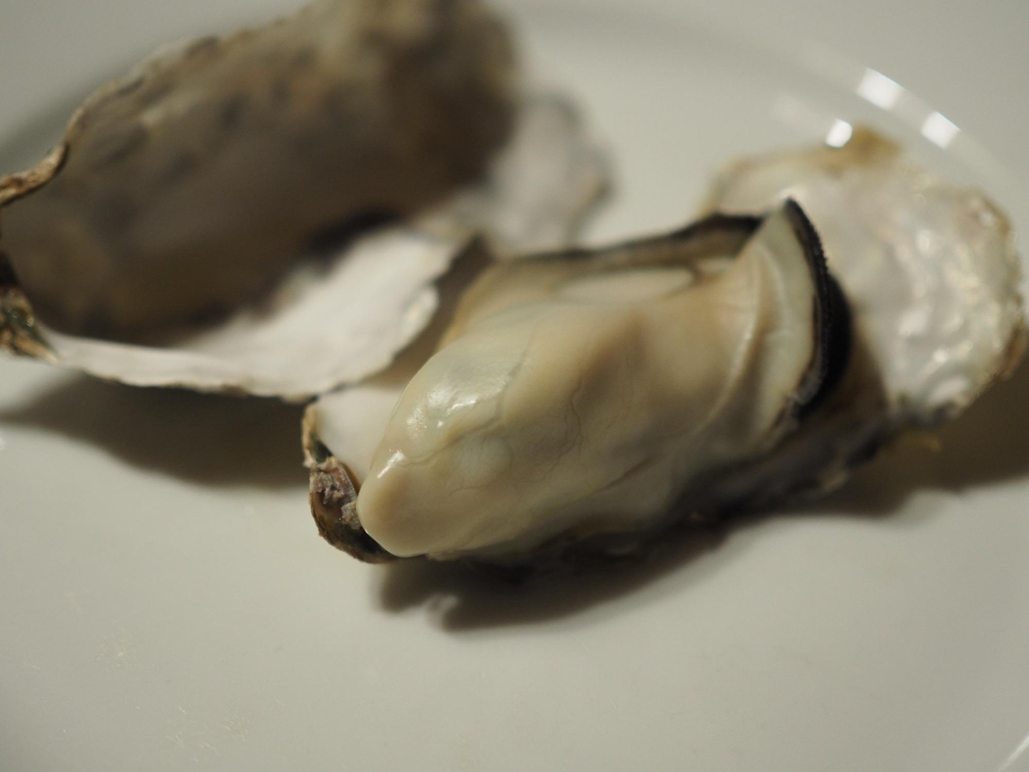 ふくふくの牡蠣