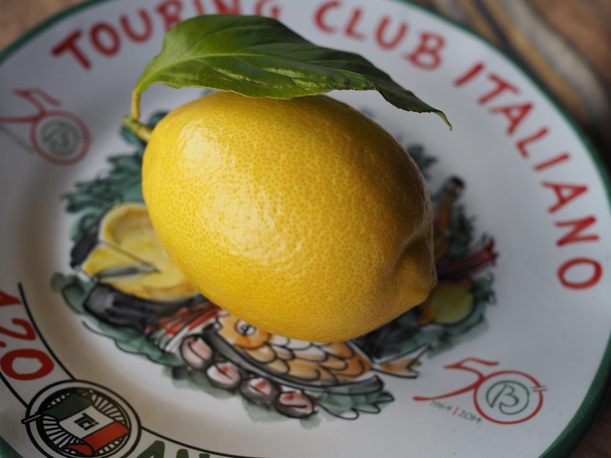 ベランダ栽培レモン